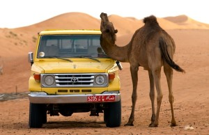 Toyota Land Cruiser Oman May 2012c