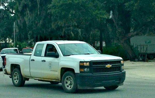 Chevrolet Silverado Work Truck Savannah